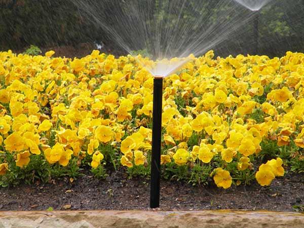 Costo-impianti-di-irrigazione-Faenza