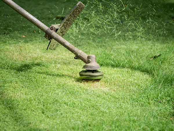 Impianti-di-Irrigazione-Forli