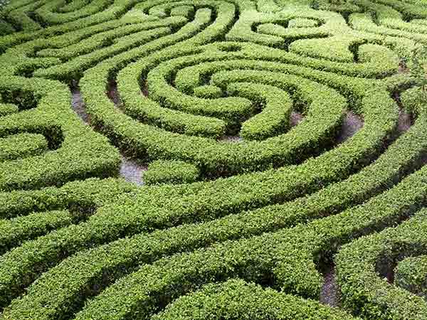 Manutenzione-giardini-storici-Faenza